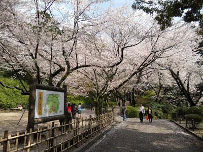 2011-4-komakiyama-5.jpg